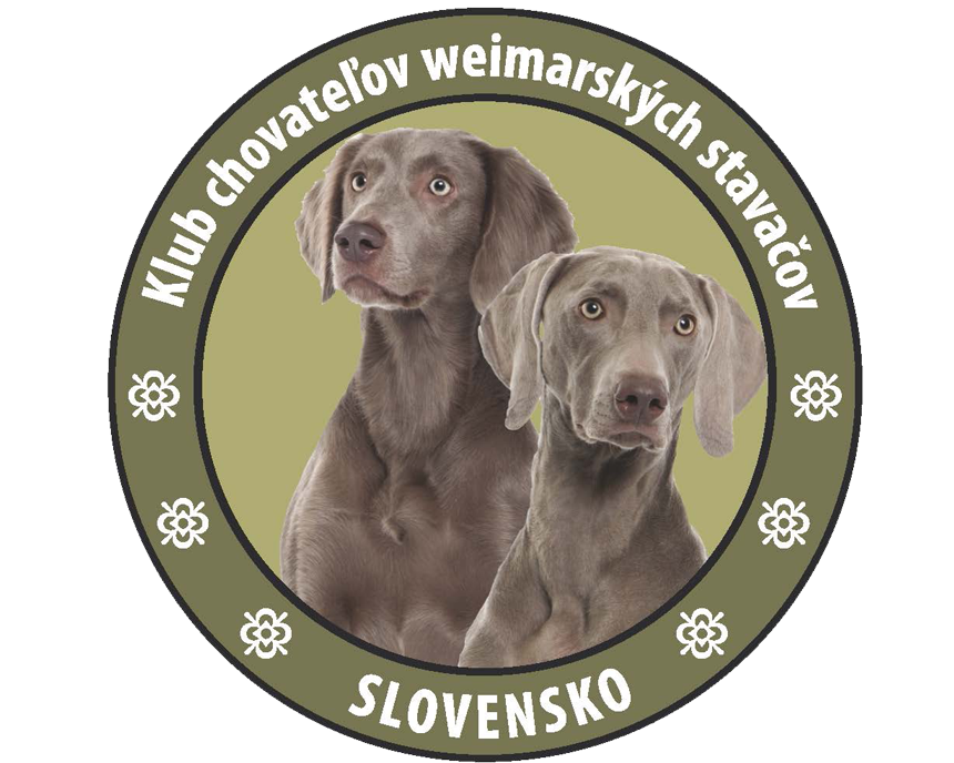 logo-KCHWS-orig